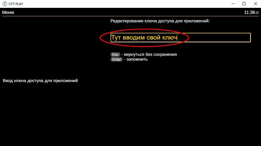 ott-play Вводим ключ